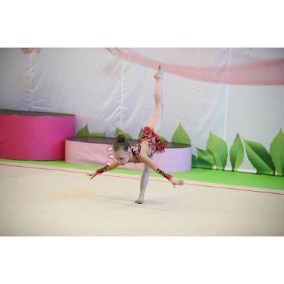 Ковёр для художественной гимнастики тренировочный 13х13 м фотография товара
