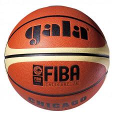 Баскетбольный мяч CHICAGO 7