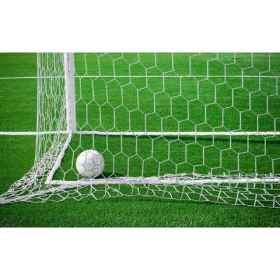 Сетка для футбольных ворот шестигранная 5,0 мм фотография товара
