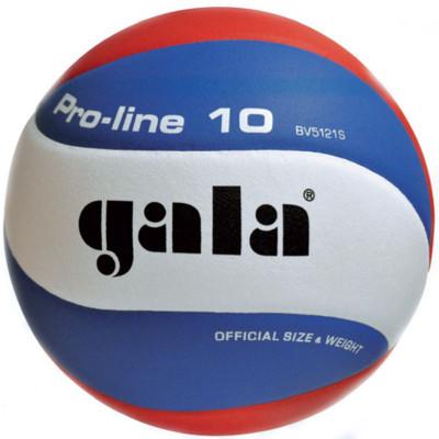 Волейбольный мяч Gala PRO-LINE BV5121S фотография товара