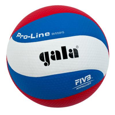 Волейбольный мяч Gala PRO-LINE BV5591S фотография товара