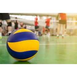 Волейбол: история возникновения и правила игры